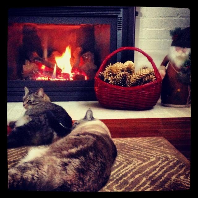 Cozy holiday living room | Megan's Island Blog