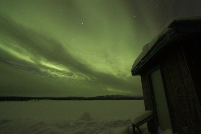 Northern lights from the Bettles' viewing pond