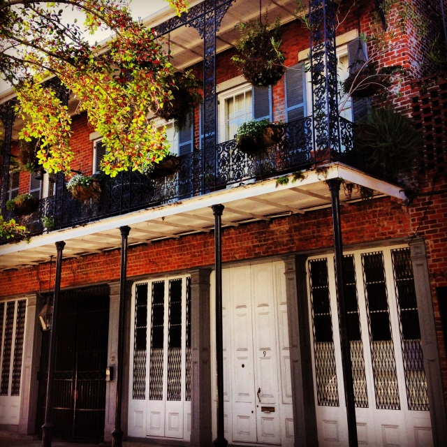 Loving the New Orleans architecture