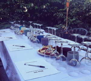 Our Vine Trainings set up