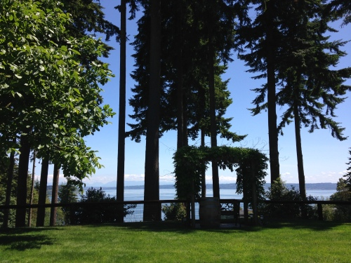 Comforts of Whidbey Winery