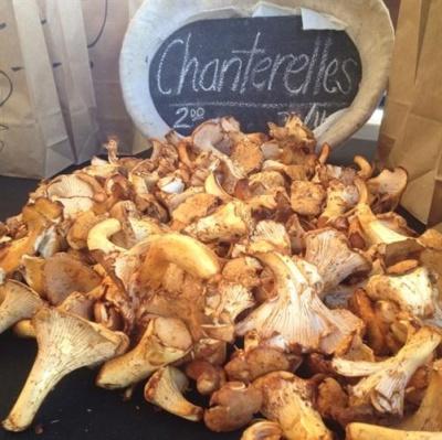 Mushroom season!