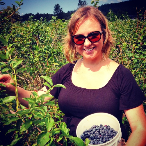 Blueberry picking in North Bend