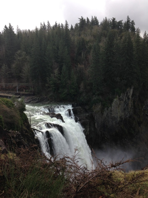 Snoqualmie Falls from the main viewing platform