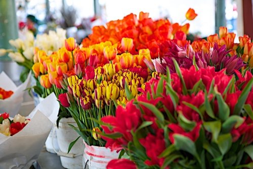 Flowers from the Pike Place Market