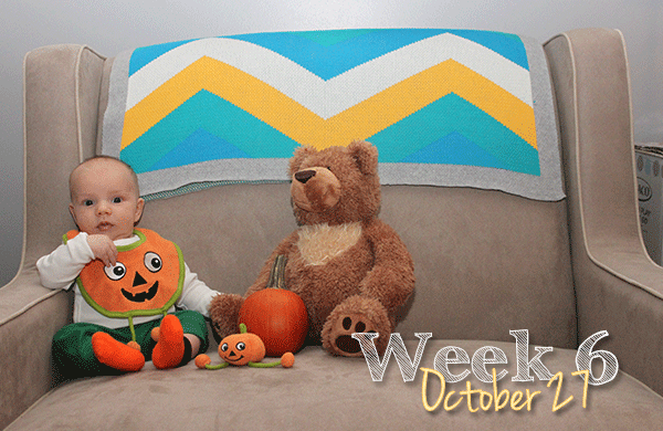 Michael's 6-week photo shoot