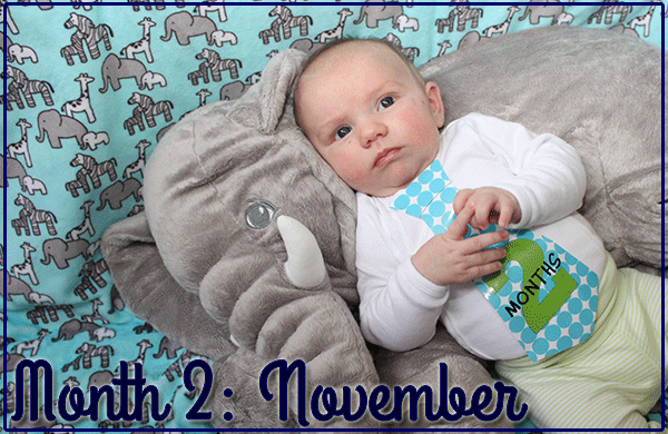 Baby Michael: Month 2