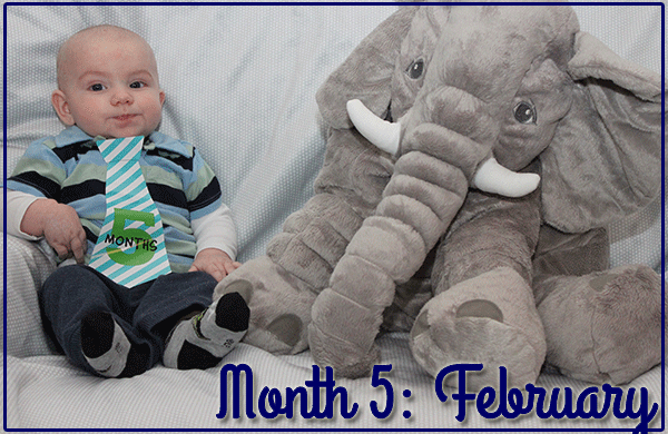 Baby Michael: Month 5