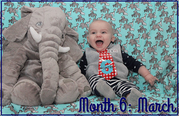 Baby Michael: Month 6