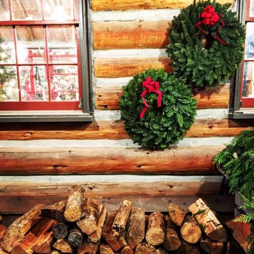 Christmas Tree Farms Seattle
