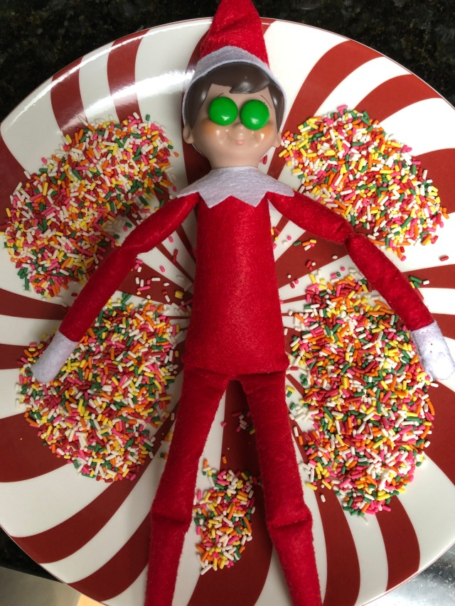 Elf on the Shelf visits the Sprinkle Spa