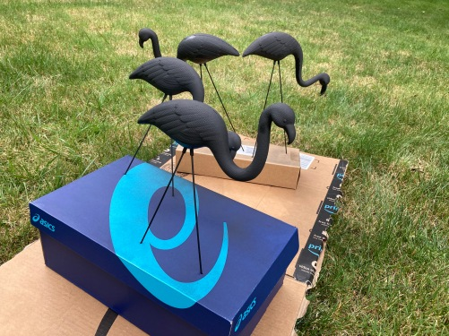 DIY Skeleton flamingos, Halloween decor, lawn art